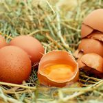 is een rauw ei eten gezond of ongezond