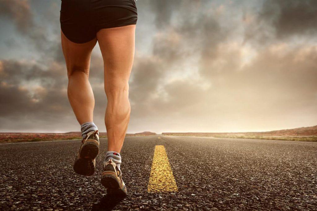 kuiten trainen met sprinten, oefeningen en meer