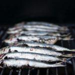 vitamine d voeding in onder andere vis