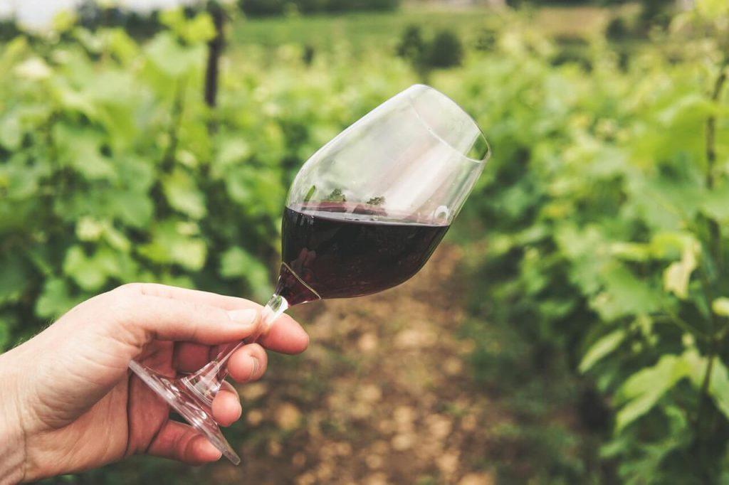 is rode wijn gezond voor je